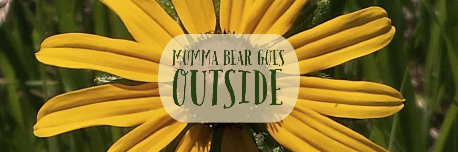 Momma Bear Goes Outside